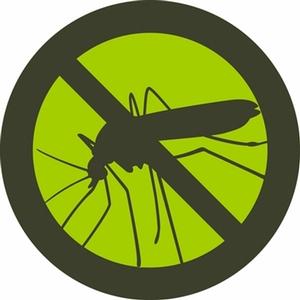 Комары не будут вас кусать и мешать отдыхать