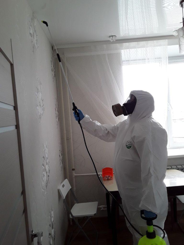 уничтожение муравьев в Гусь-Хрустальном