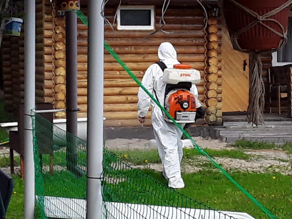 Уничтожение жуков-древоточцев в Калуге